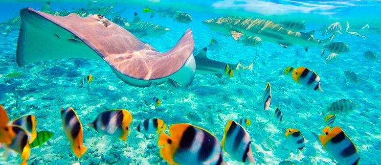 viajar a Maldivas con Exoticca