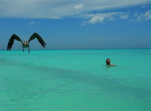 isla-aruba